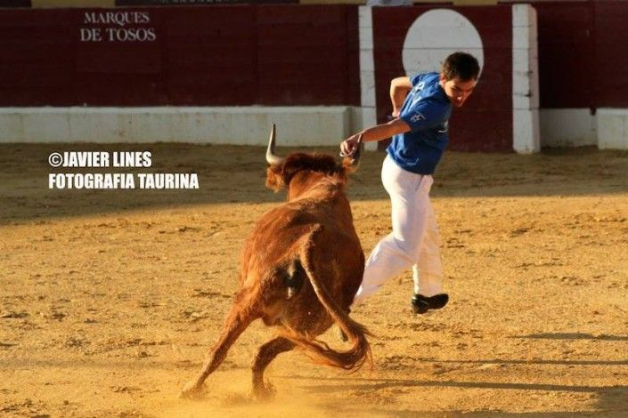 Javier Lines