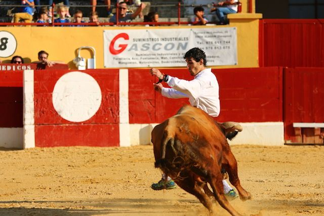 Concurso Cortes Alagón