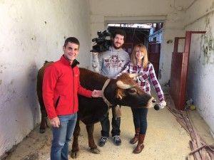 Prueba y Selección de Vacas Fragua Anillas Alagón 2