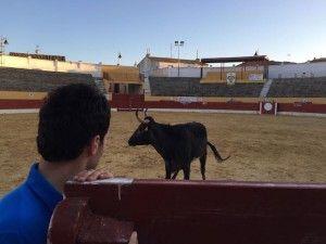 Prueba y Selección vacas Fragua Alagón