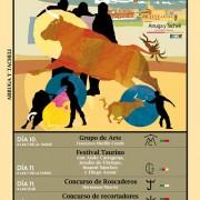 Feria taurina Alagon